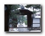 日本京都市�L景高清壁�(日本本州南部)