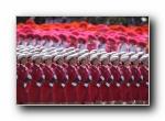 2009年国庆大阅兵女兵风姿壁纸