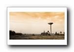 经典精美风光风景动物生物摄影高清宽屏壁纸(十七)