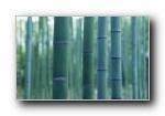 日本特色风光宽屏壁纸(第四集)