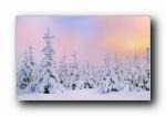 《冬雪》Windows 7主题风光风景宽屏壁纸