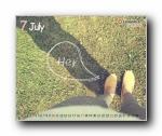 2011年7月(七月)月历壁纸 (CYWORLD版)