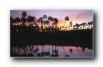Webshots 2011年七月精美风光动物摄影宽屏壁纸