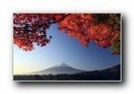秋之�:日本