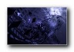 《抽象艺术:暗色》Windows 7官方主题艺术设计宽屏壁纸