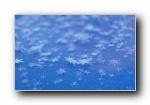 雪花与冰霜 宽屏壁纸