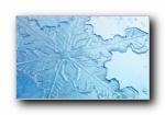 雪花�c冰霜 ��屏壁�