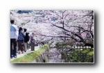 2012年风光风景月历年历宽屏壁纸