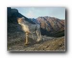 《国家地理杂志》 2012年十一月精美摄影壁纸