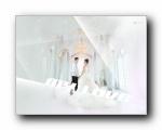 腾讯QQ精美壁纸2012年第十二季 (宽屏+普屏)