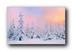《冬季雪景》必应官方宽屏壁纸