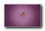 Ubuntu 13.04 操作系统宽屏壁纸
