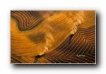 2013年 Bing官方主题第八波 宽屏壁纸