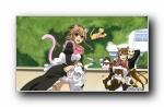 《猫愿三角恋》(Nyan koi!)