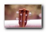 尤克里里(乌克丽丽)小四弦