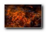 火焰 黑色宽屏壁纸