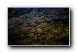 日本本州风光风景宽屏壁纸