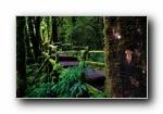 泰国因他农山国家公园 风光风景宽屏壁纸