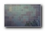 特别的冷色调随拍街拍宽屏壁纸
