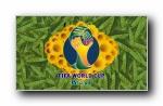 2014年巴西世界杯足球宽屏壁纸