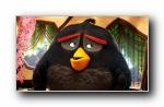 愤怒的小鸟 电影宽屏壁纸