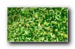2016年 Bing官方主题第六波 宽屏壁纸