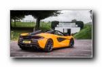 2017 McLaren �~�P�� The Tour
