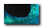 2018年 Bing官方主题第三波 宽屏壁纸