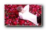 鹿晗《玫瑰蜜语传情》宽屏壁纸
