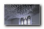 2018年 Bing官方主题第九波 宽屏壁纸
