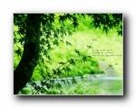 韩国版圣经壁纸 自然风景篇(二)