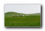 北国碧玉呼伦贝尔大草原