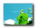 炎炎夏日,蓝天白云壁纸