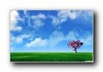 极品精选1680x1050宽屏高清壁纸