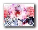 桌酷精选壁纸 2008/10/7