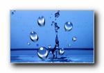 精美高清水珠/水滴壁纸