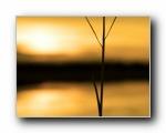 电脑设计高清风景特辑 2008/12/27