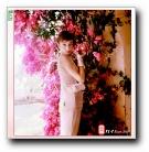 天使神话(Audrey Hepburn)