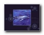 蓝色海洋月历壁纸