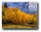 11月风景月历壁纸