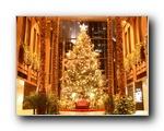 圣诞节图片壁纸1