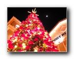 圣诞节图片壁纸3