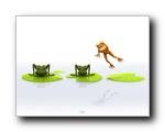 超搞笑3D动物壁纸