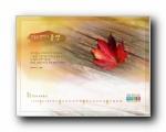 韩国11月壁纸
