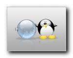 Linux系统企鹅之玻璃质感壁纸