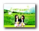 sandy mandy