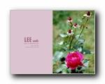 LEE WEB(上)